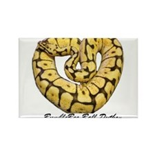Bumblebee Ball Python Rectangle Magnet