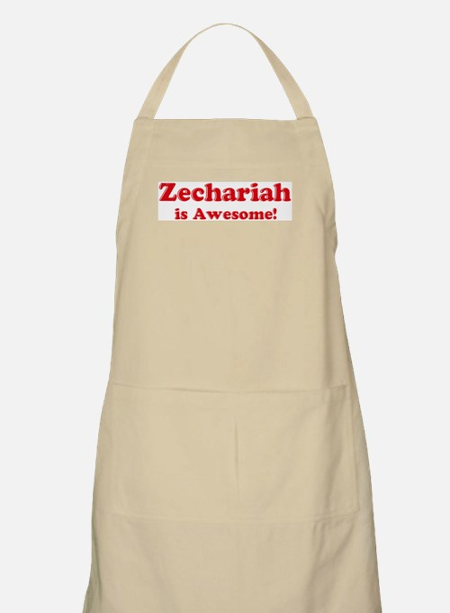 Zechariah is Awesome BBQ Apron