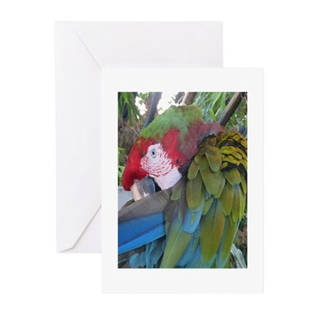 calico 1 5.5x7.5 Greeting Cards