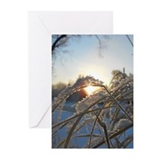Snowflakes on Grass Greeting Cards (Pk of 10)