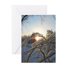 Snowflakes on Grass Greeting Card