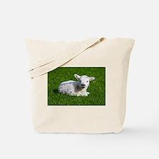 Baby lamb Tote Bag