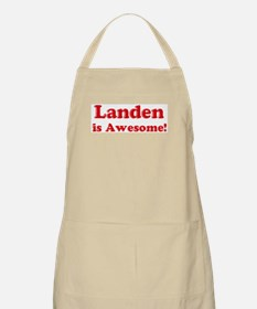 Landen is Awesome BBQ Apron