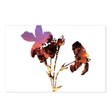 Floral Sunset Postcards (Package of 8)