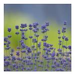 Lavender Flowers Square Car Magnet 3