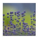 Lavender Flowers Tile Coaster