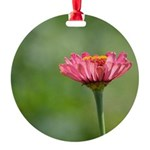 Pink Zinnia Flower Round Ornament