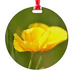 Orange Poppies Round Ornament