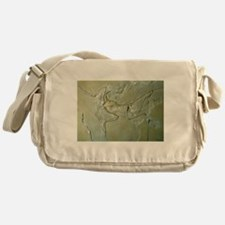 Archaeopteryx fossil - Messenger Bag