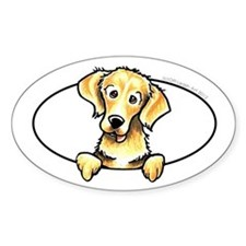 Golden Retriever Peeking Bumper Decal
