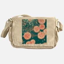 Stem cells, light micrograph - Messenger Bag