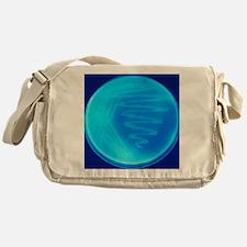 Bacterial culture - Messenger Bag