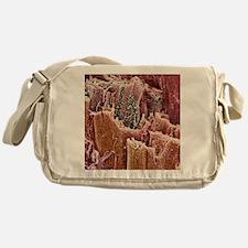 Cardiac muscle, SEM - Messenger Bag