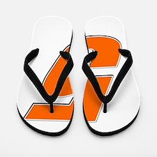 RDnumber5 Flip Flops