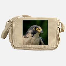 Peregrine falcon - Messenger Bag