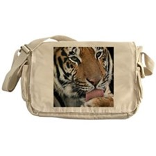 Tiger licking its paw - Messenger Bag