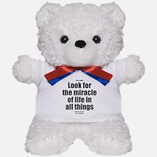 All Things Teddy Bear