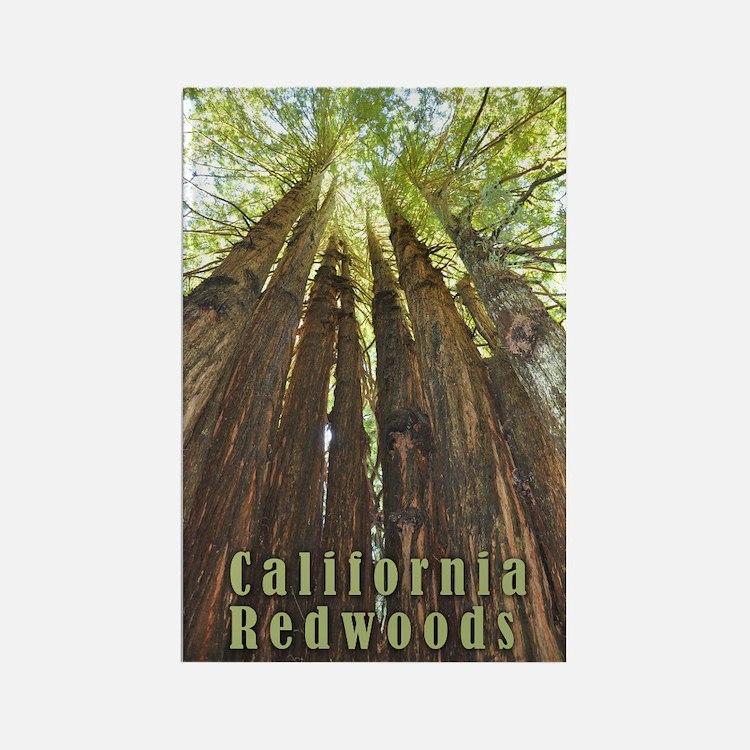California Redwoods Magnets
