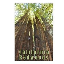 Unique Trees Postcards (Package of 8)