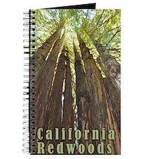 Cute Redwoods california Journal