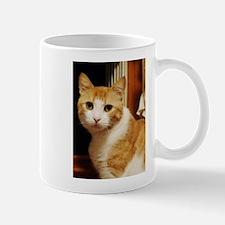 Orange Tabby Mug