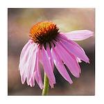 pink echinacea flower Tile Coaster