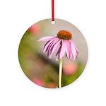 pink echinacea Ornament (Round)
