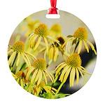 yellow echinacea flowers Ornament