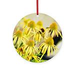 yellow echinacea flowers Ornament (Round)