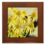 yellow echinacea flowers Framed Tile