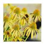 yellow echinacea flowers Tile Coaster