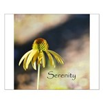 yellow echinicea serenity Posters