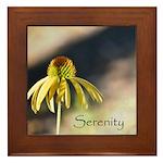 yellow echinicea serenity Framed Tile