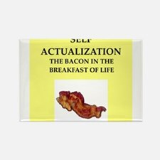 self,actualization Rectangle Magnet