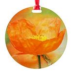 orange iceland poppy Ornament