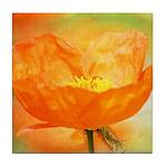 orange iceland poppy Tile Coaster
