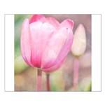 pink tulips Posters