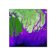 Ganges Delta - Square Sticker 3