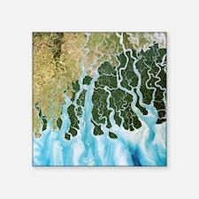 Ganges River delta, India - Square Sticker 3