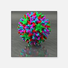 Hepatitis B virus, artwork - Square Sticker 3