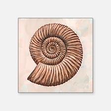 Perisphinctes ammonite, artwork - Square Sticker 3