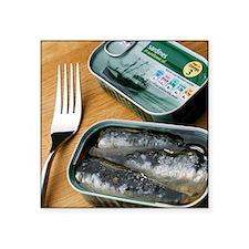 Tinned sardines - Square Sticker 3