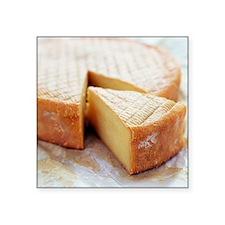 Camembert cheese - Square Sticker 3