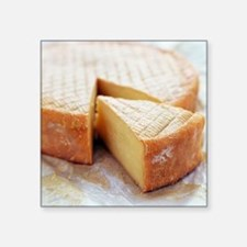 Camembert cheese - Square Sticker 3