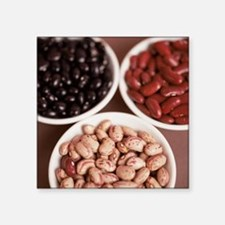 Dried pulses - Square Sticker 3