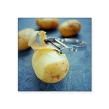 Potatoes - Square Sticker 3