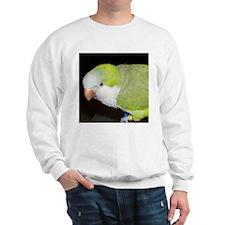 Quaker Parrot Sweatshirt