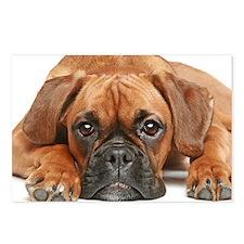 German Boxer dog - Postcards (Pk of 8)