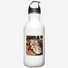 Chocolate Lab, Head on Sofa Water Bottle