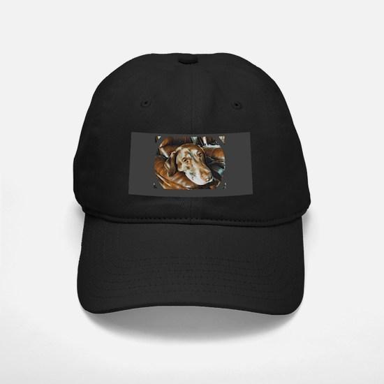 Chocolate Lab, Head on Sofa Baseball Hat